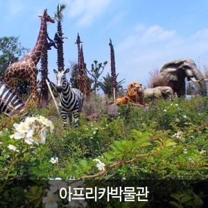 [입장권]아프리카박물관/ 제주도여행/ 모바일쿠폰/ 관광지입장권