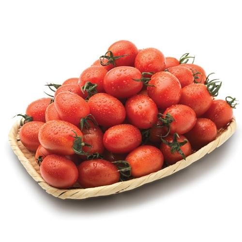 국산 대추방울토마토