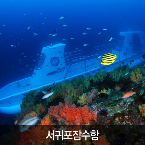 제주 서귀포 잠수함 입장권