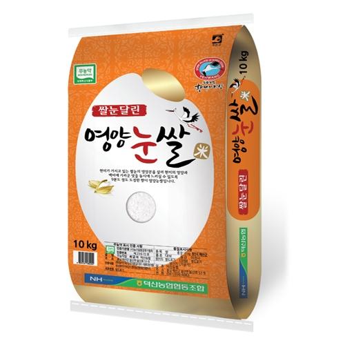 쌀눈달린 영양 눈쌀