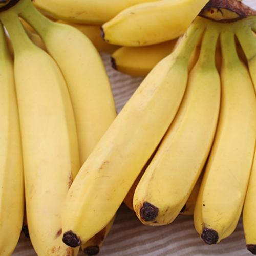 델몬트 바나나 3송이 (4kg 내외)
