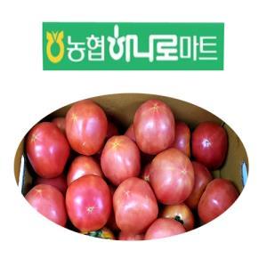 [농산] 토마토5kg / 상품과이미지는 다